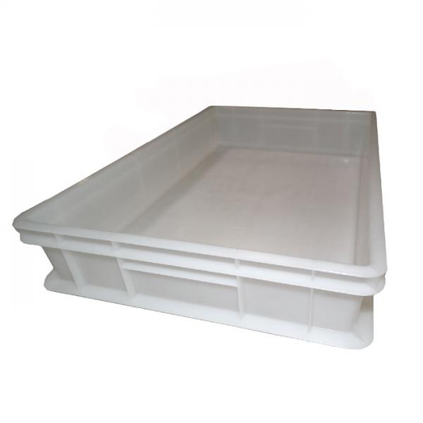 60 x 40 x 10cm - PIZZABALLENBOX - Pizzateigbehälter